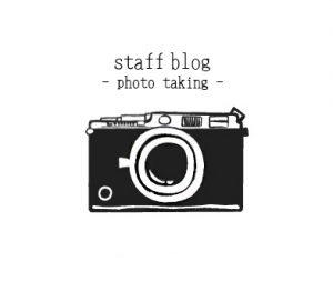 アルカシャナStaff BlogーPhoto Taking-