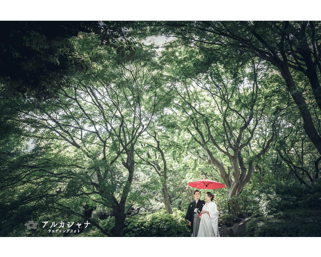 ロケーション撮影(池田山公園)